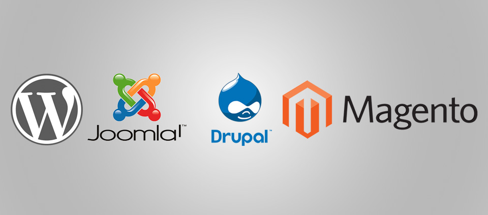 The basics of CMS, drupal, wordpress and other CMS
